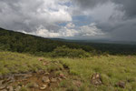 Übergang von Savanne in Trockenregenwald und wechselfeuchten Regenwald