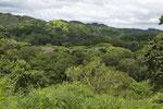 Trockenregenwald und Savanne an der Grenze zu Nicaragua