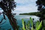 Wo sich Meer und Regenwald küssen... Refugio de Vida Silvestre Gandoca-Manzanillo, südliche Karibikküste
