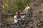 Wenn Forst- und Reptilienexperten die Rollen tauschen