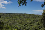 Der grösste noch bestehende Trockenregenwald Zentralamerikas im Parque Nacional Santa Rosa