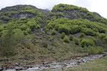Lebensraum von Alpenviper, Mauer- und Smaragdeidechse