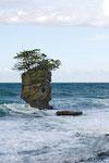 Felsen an der Küste des Refugio de Vida Silvestre Gandoca-Manzanillo