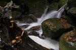 Schlucht im Berner Jura