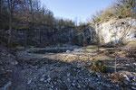 Tümpel für die Geburtshelferkröte in einem alten Steinbruch, Kanton Waadt