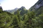 Simmental, Berner Oberland