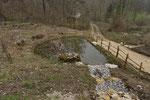 Weiher mit Frischwasserzufluss. Laichgewässer von Geburtshelferkröte, Grasfrosch, Erdkröte, Bergmolch, Fadenmolch und Feuersalamander, Kanton Solothurn