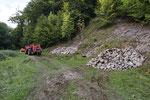 Anlage von Steinhaufen am Rand einer Viehweide, Kanton Bern