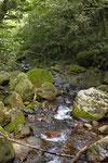Bergbach, Parque Nacional Rincón de la Vieja, Cordillera de Guanacaste