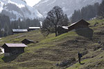 Vorfrühling in den Alpen
