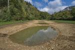 Neue Weiher für Erdkröte, Geburtshelferkröte und Grasfrosch, Kanton Solothurn