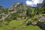 Lebensraum der Bergeidechse und anderer Reptilienarten im Berner Oberland