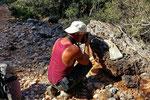 Beim Fotografieren einer Sandotter