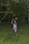 Fledermaus-Shooting