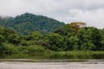 Blick über den Grenzfluss Río San Juan ins nicaraguanische Schutzgebiet Indio Maíz