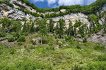 Im Anschluss an Aufwertungsmassnahmen werden in den Habitaten Erfolgskontrollen durchgeführt