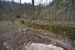 Von Bewuchs befreite Trockenmauer im Kanton Solothurn. Kurze Zeit später wurde die Mauer bereits von ersten Reptilien als Lebensraum entdeckt.