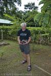 Eine Boa constrictor imperator, die Bauern aus dem Nachbardorf beim Fressen eines Huhns erwischt hatten. Man brachte sie ins Reservat der Lagarto Lodge, wo wir sie im Regenwald freiliessen.