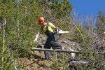 Schwierige Arbeitsbedingungen im Steilhang, Berner Oberland