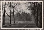 Stockenstraße, Fotografie von 1950, Bildnummer: bbv_01199
