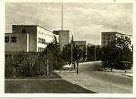 Görresstraße (heute: Platz der Vereinten Nationen), Fotografie um 1950, Bildnummer: bbv_00236