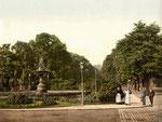 Poppelsdorfer Allee, Photochromie von 1899, Bildnummer: bbv_00002