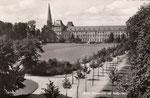 Hofgarten nach Kriegszerstörung und Wiederaufforstung um 1955, Bildnummer: bbv_00881