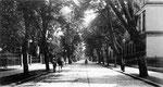 Koblenzer Straße (heute: Adenauerallee) um 1900, Bildnummer: bbv_00035