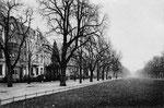 Poppelsdorfer Allee um 1925, Bildnummer: bbv_00117