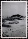 Eisgang auf dem Rhein bei Bonn im Februar 1942, Bildnummer: bbv_00742