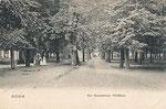 Baumschuler Wäldchen um 1900, Bildnummer: bbv_00209