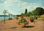 Rheinufer, Bildnummer: bbv_00461