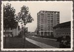 HICOG-Hochhaus Tannenbusch, Fotografie von 1950, Bildnummer: bbv_01212
