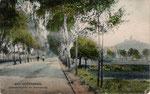Bonner Straße, Heliochromdruck um 1905, Bildnummer: bbv_00360