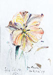 841 Im Garten - für Lina  ( 2004), 10x15 cm, Aquarell, Tuschefeder