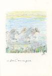 598 In der Carmargue (ca. 2005), 13x19 cm, Bunststift, Aquarell