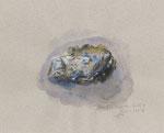 771 Auster von Gosch (2008), Aquarell