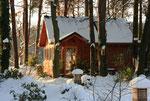 Wintermärchen 2010/11