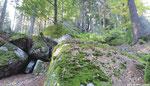 ... ganz besonders die Bereiche mit Steinformationen wie hier am Aichelberg, ...