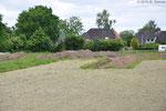 15.6.2015: Baupause, damit  Archäologen das Gelände absuchen konnten.