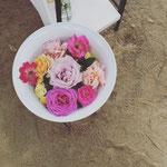お花係は、松本在住の母に一任。ご好評いただけてよかったです^^