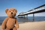 Und noch eine Seebrücke mit einem Seebär auf Landgang auf Usedom. Das ist in Heringsdorf