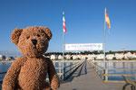 Und noch eine Seebrücke mit einem Seebär auf Landgang auf Usedom