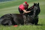 """Schon ein alter Spruch sagt: """"Wem nie ein Pferd zu Füßen lag, der weiß nicht wie weit Vertrauen gehen kann!"""" wieder ein wunderschönes Foto von Habsburg und Sabrina"""
