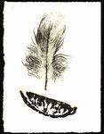 Feder 1, Monotypie auf Papier, 2000, 19x14 cm [ID 20000205]