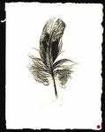 Feder 5, Monotypie auf Papier, 2000, 19x14 cm [ID 20000209]