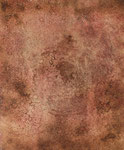 sin título, 2008, Técnica Mixta sobre Lienzo, 46 x 38 cm [6/9]