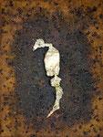 Caballo Marino, 2008, Mischtechnik auf Leinwand, 40 x 30 cm