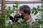 DCC Usertreffen Schmetterlingspark Aumühle 2009