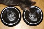 geritzte Portraits unserer Katzen als Fressnapf